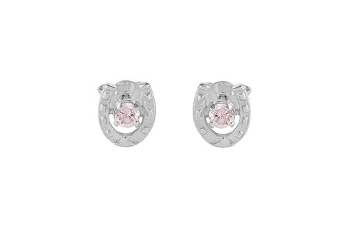 Horseshoe Stone Set Earrings