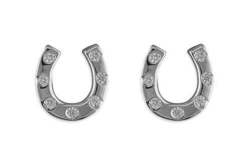 Horseshoe Cubic Zirconia Earrings